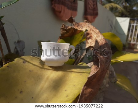 Abstract image of a tiny little tea pot kept on top of a green leaf - Image of a tiny white cup on top of a green leaf on a garden, concept images, abstract image.