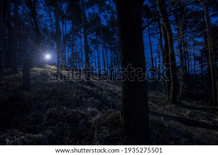 Scary light in a dark forest transmitting light onto floor or gravel path in the middle of the night. Visible nice streak or sun flare.