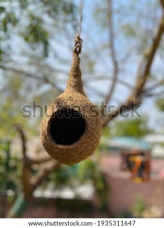 Artificial Sparrow nest, best picture