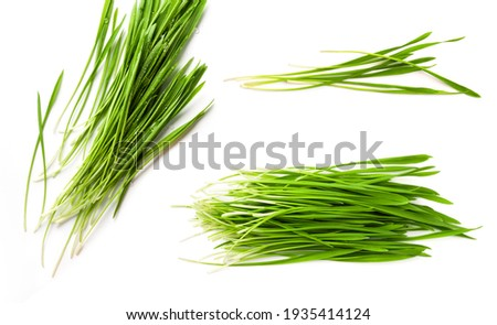 Detox Food Superfood Green Organic Barley Sprout grass isolated on white background. Royalty-Free Stock Photo #1935414124