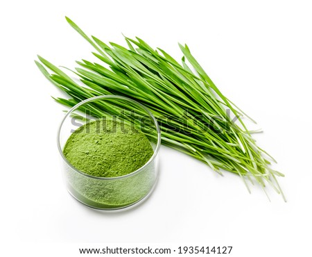 Detox Food Superfood Green Barley Sprout grass and a Glass Bowl of Powder, Flat Lay. Space for Text isolated on whit.  Royalty-Free Stock Photo #1935414127
