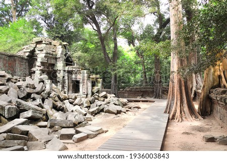 Giant banyan tree and ruins of khmer ancient temple, Angkor Wat (Angkor Thom) complex, Siem reap, Cambodia, Indochina. UNESCO world heritage Site Royalty-Free Stock Photo #1936003843