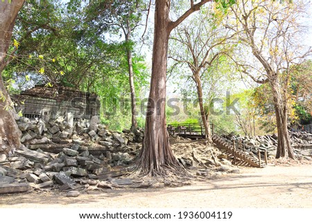 Giant trees on ruin of Koh Ker complex, Cambodia, Indochina. UNESCO world heritage site Royalty-Free Stock Photo #1936004119