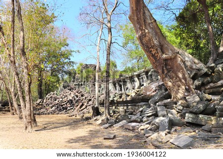 Giant trees on ruin of Koh Ker complex, Cambodia, Indochina. UNESCO world heritage site Royalty-Free Stock Photo #1936004122