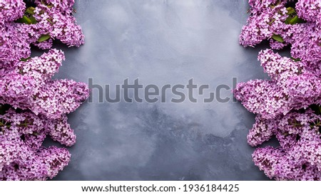 Spring lilac flowers on grey background with frame for text. Banner Royalty-Free Stock Photo #1936184425