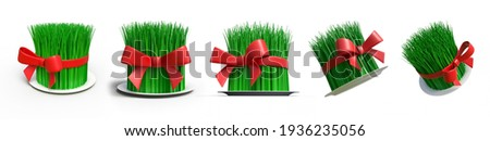 Novruz holiday in Azerbaijan is a feast of spring, start of New Year. Spring equinox, Persian Nowruz greeting. isolated white background 3d illustration different angle view realistic set