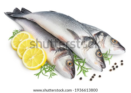 Sea bass fich isolated on white background with clipping path and full depth of field. Royalty-Free Stock Photo #1936613800