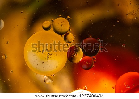 oil bubbles, obstruction, beauty in ordinary Royalty-Free Stock Photo #1937400496