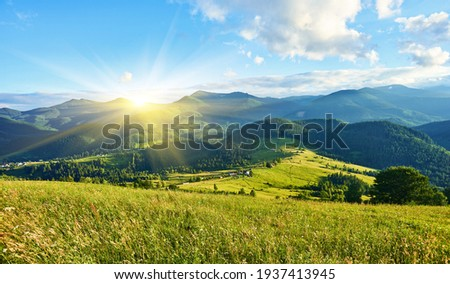 Idyllic landscape in the Alps with fresh green meadows and blooming flowers and snow-capped mountain tops in the background Royalty-Free Stock Photo #1937413945