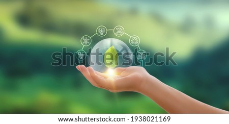 Hand holding green leaf with icons energy sources for renewable, sustainable development. Ecology concept. Royalty-Free Stock Photo #1938021169