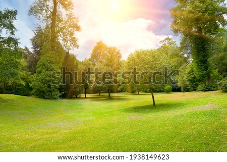 Bright sunny day in summer park. Royalty-Free Stock Photo #1938149623