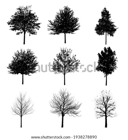 Collection of black tree silhouettes isolated on white background , silhouette of trees Royalty-Free Stock Photo #1938278890