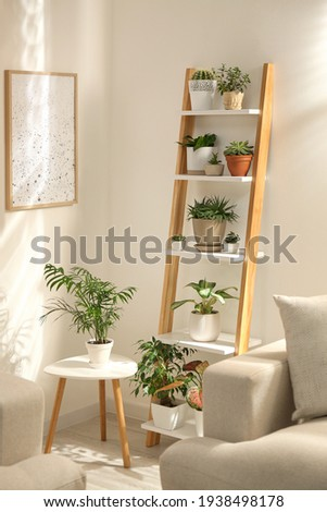 Decorative wooden ladder in stylish living room interior Royalty-Free Stock Photo #1938498178