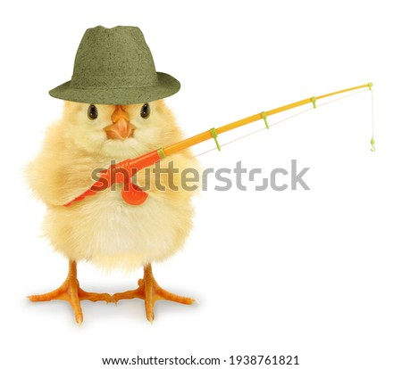 Cute cool chick fisherman with fishing rod hobby leisure activity funny conceptual image Royalty-Free Stock Photo #1938761821