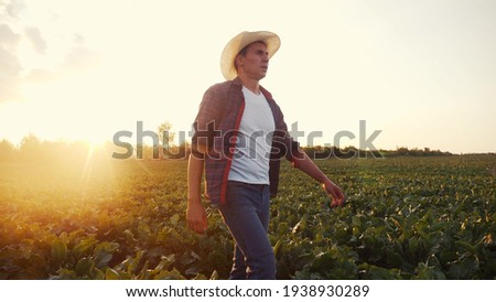 agriculture. Farmer man in a walk on a green field of a field of healthy food. business agriculture concept farmer walk home after harvesting at sunset. farmer walk agriculture concept natural food Royalty-Free Stock Photo #1938930289