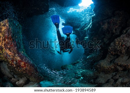 A diver explores the cracks, crevices and holes in a coral reef on the island of Grand Cayman. Many reef species, such as silversides, prefer the shadowed protection of these dark areas. Royalty-Free Stock Photo #193894589