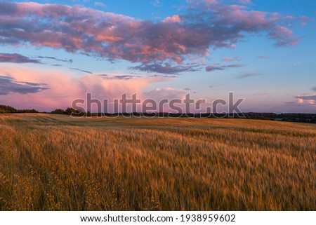 Cloudscape in summer at sunset on the lake and field Royalty-Free Stock Photo #1938959602