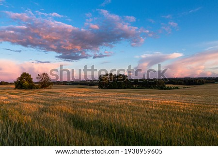 Cloudscape in summer at sunset on the lake and field Royalty-Free Stock Photo #1938959605