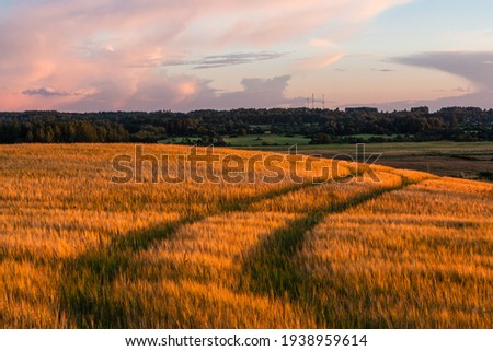 Cloudscape in summer at sunset on the lake and field Royalty-Free Stock Photo #1938959614