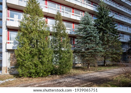 Examples of landscaping with conifers in the city and park. Conifers in landscaping and urban landscaping. Royalty-Free Stock Photo #1939065751