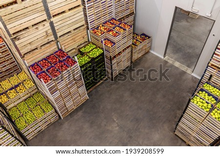 Apples and pears in crates ready for shipping. Cold storage interior. Royalty-Free Stock Photo #1939208599