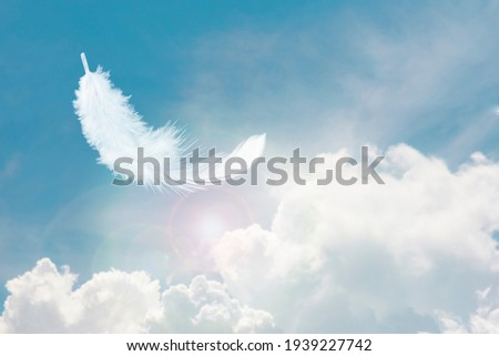 Soft and Light Fluffy White Feather Floating in The Sky with Clouds. Abstract Feather Heavenly Dreamy Fluffy Colorful Sky. Royalty-Free Stock Photo #1939227742