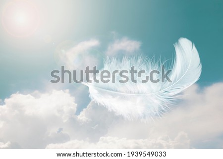 Beautiful Soft and Light Fluffy White Feathers Floating inThe Sky with Clouds. Abstract. Heavenly Dreamy Fluffy Colorful Sky. Royalty-Free Stock Photo #1939549033
