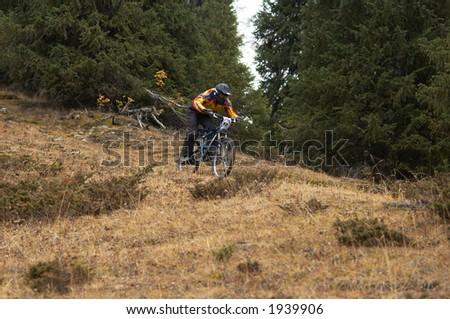 Mountain biker downhill in forest #1939906