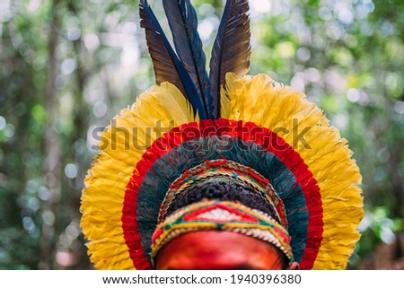 traditional feather headdress of the Pataxó tribe. headdress focus Royalty-Free Stock Photo #1940396380