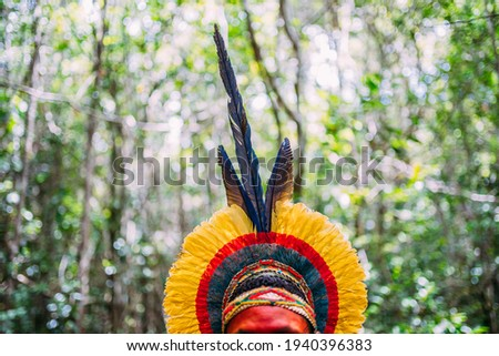 traditional feather headdress of the Pataxó tribe. headdress focus Royalty-Free Stock Photo #1940396383