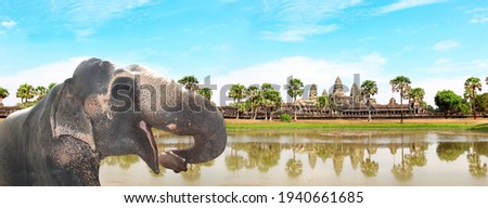 Horizontal banner with elephant (Elephas maximus) on blue sky background with famous khmer temple complex Angkor Wat (Angkor Thom), Siem reap, Cambodia, Indochina Royalty-Free Stock Photo #1940661685