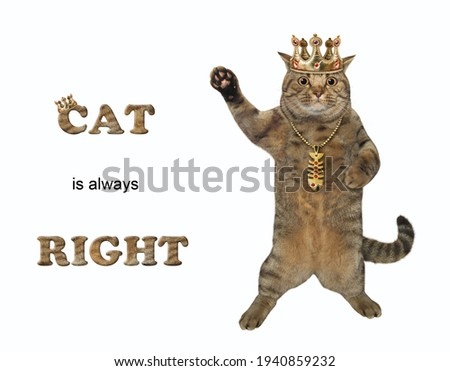 A beige cat in a golden crown is standing and waving paw. Cat is always right. White background. Isolated.
