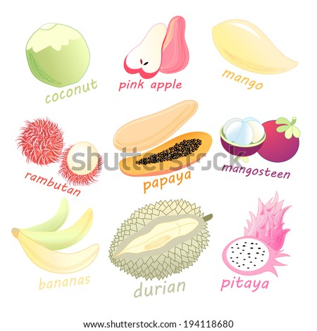 bright graphic set of exotic fruits on white background   #194118680