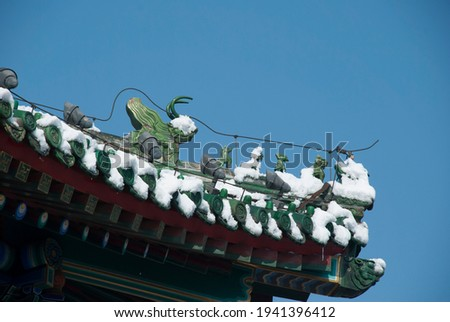 The palace roof covered by heavy snow at the Beihai park. This photo was taken on Mar 18 2011.