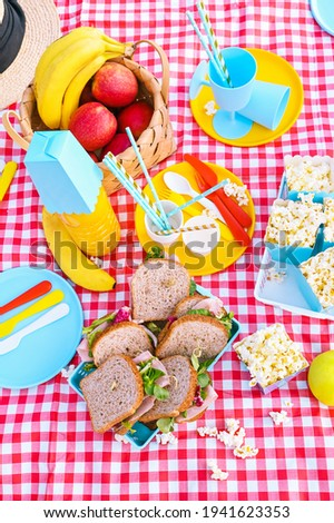 Lunch in the park on the green grass. Summer sunny day and picnic basket. Popcorn and sandwiches for a snack outdoors in nature. in bright plastic dishes on a checkered tablecloth . Copy space. Above