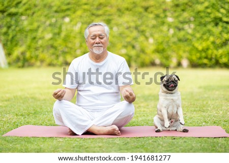 Calm of Healthy Asian Elderly man with white hairs exercise yoga lotus pose on yoga mat for meditation with dog pug breed on green grass at park,Wellness Senior Recreation with yoga and dog concept Royalty-Free Stock Photo #1941681277