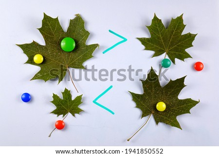 Teachimg children to math symbols, greater and less signs using magnets and green maple leaves on the board. An example of an educational math game for children