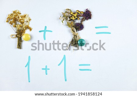 Teaching kids basic of math addition with the aid of magnets and bouquets of dry flowers on the whiteboard, example of educational math children game