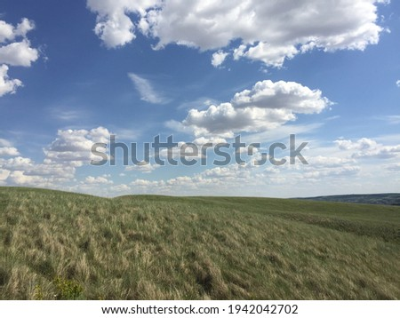 Blue Sky  and fluffy clouds above green field   Angel hands release the shape of a dove in the centre of the picture