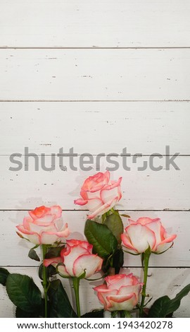 A bouquet of white and pink roses on rustic white wooden background. Happy Birthday, Happy Mother's Day, Wedding Day, Valentine's Day, International Women Day greeting card.