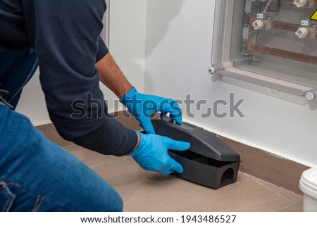 Professional preparing trap for rats, mice, for pest control in a special black box to place the poison. Royalty-Free Stock Photo #1943486527