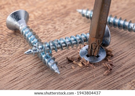 Screwdriver screw in a wood oaks plank. Self-tapping screw for PZ3 bit. Screws macro photo. Construction abstraction. Industrial background. Royalty-Free Stock Photo #1943804437