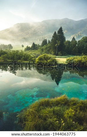 Nature Reserve Zelenci, krajnska gora, Slovenia, Europe. Wonderful morning view of Zelenci nature reserve. Slovenia travel. Royalty-Free Stock Photo #1944063775