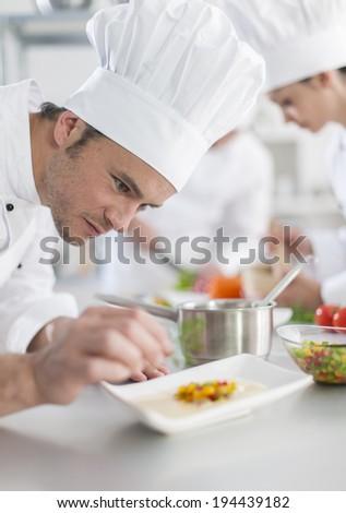 closeup on chef garnishing a plate #194439182