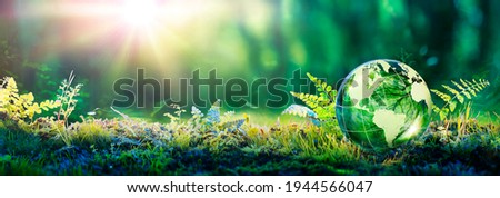 Environment Concept - Globe Glass In Green Forest With Sunlight Royalty-Free Stock Photo #1944566047