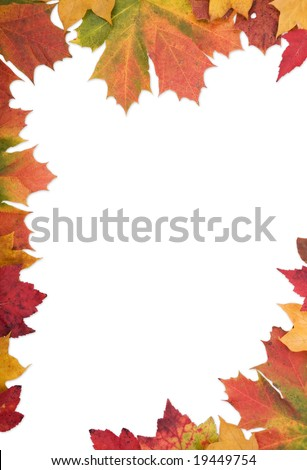 Document border made from mixed autumn leaves