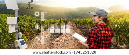 Weather station in a field with vineyard. Woman farmer with tablet at wine farm. Royalty-Free Stock Photo #1945251328