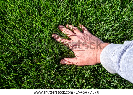 Man inspecting lush green grass lawn. Caring, care, looking, thick, outside, Sky, sunshine, care, seed, fescue, tall, watering, perfect, soil, manicured, blade, horizon line, eye level, baseball field Royalty-Free Stock Photo #1945477570