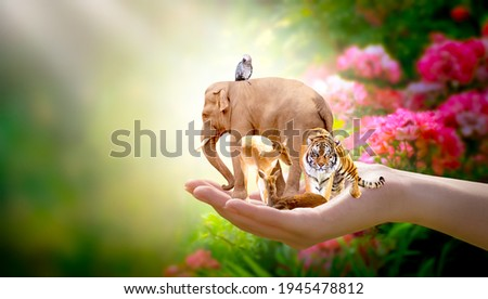 Earth Day, World Animal or Wildlife Day concept. Save our green planet, protect nature reserve, protection of endangered species and biological diversity. Elephant, tiger, deer, parrot in human hand. Royalty-Free Stock Photo #1945478812