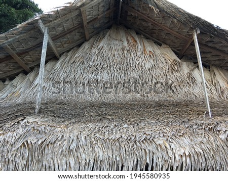 close up view of thatching roof Royalty-Free Stock Photo #1945580935